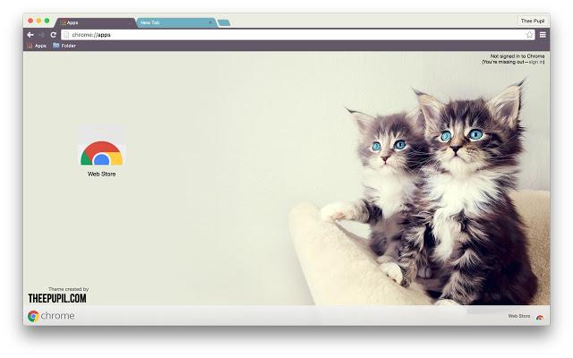 kittens - google chrome themes