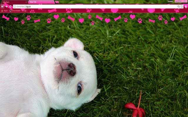 puppy love - google chrome themes