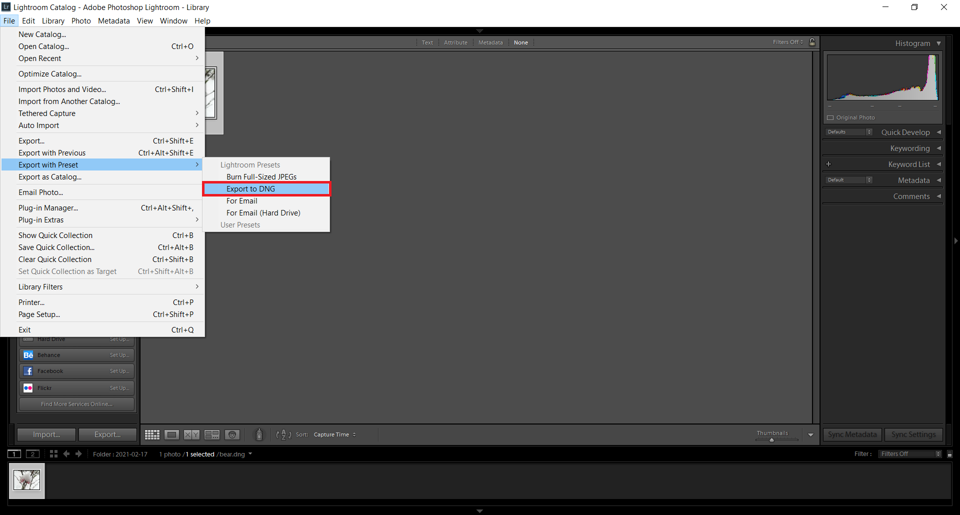 How to convert CR2 to DNG with Lightroom?