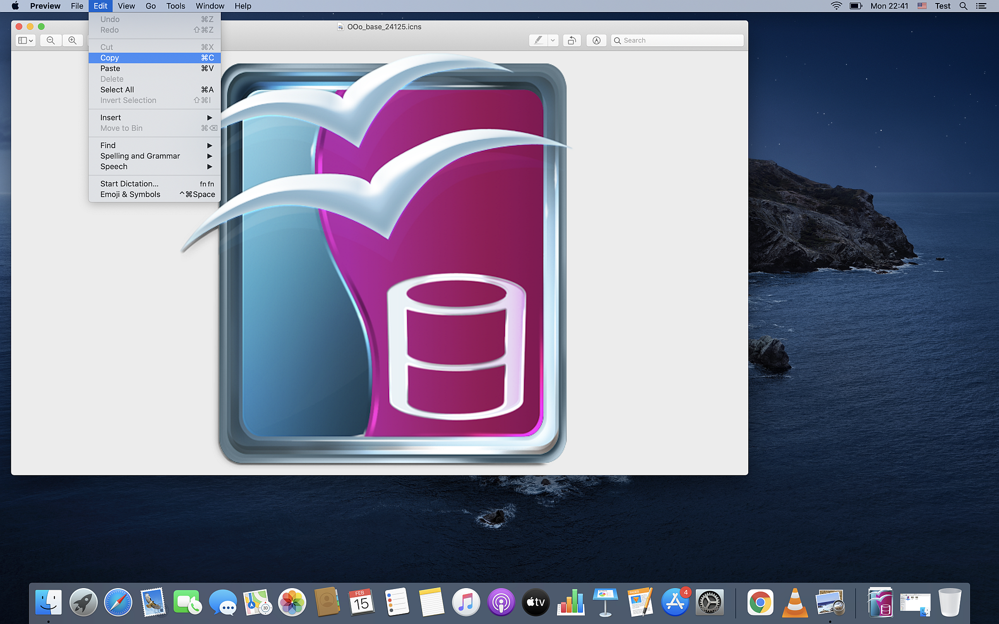 Opened ICNS file in Apple Preview