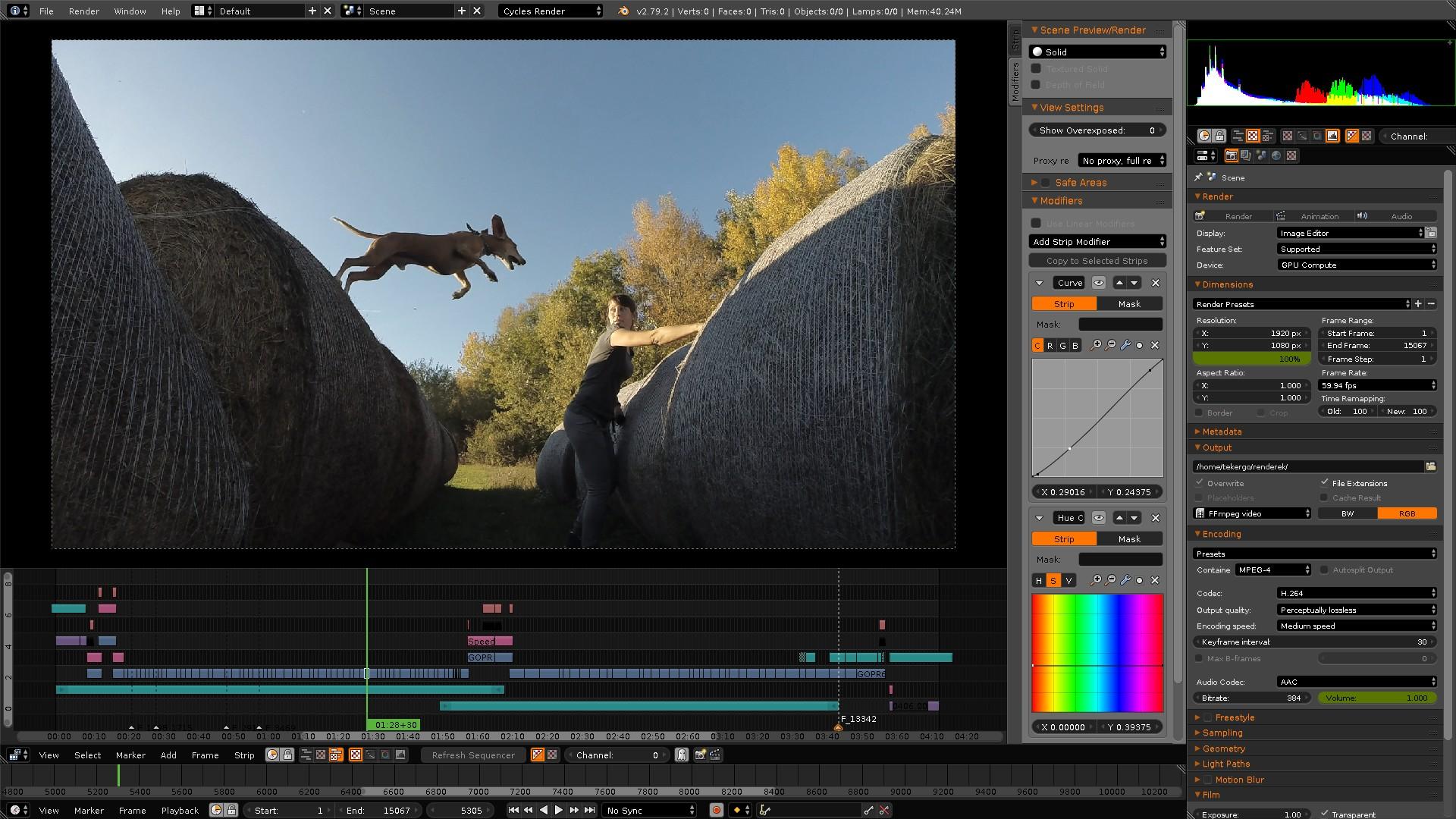 blender free online video tools